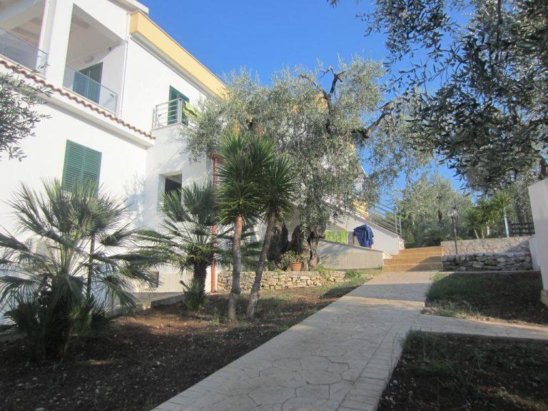 Appartamenti Villa Elisa, immersi negli ulivi