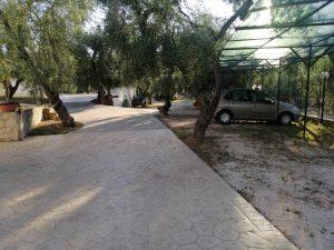 Parcheggio auto all'ombra di una struttura dedicata e degli alberi di ulivo